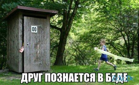 Подборка прикольных фотографий и картинок.