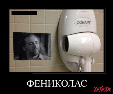 Подборка лучших смешных фоток веселых картинок демотиваторов