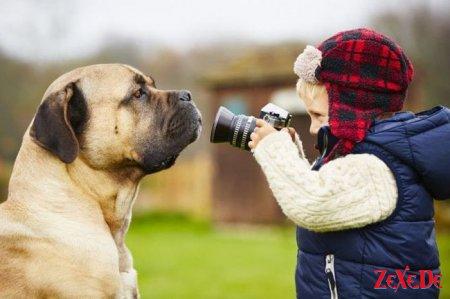 Подборка смешных фоток и веселых картинок