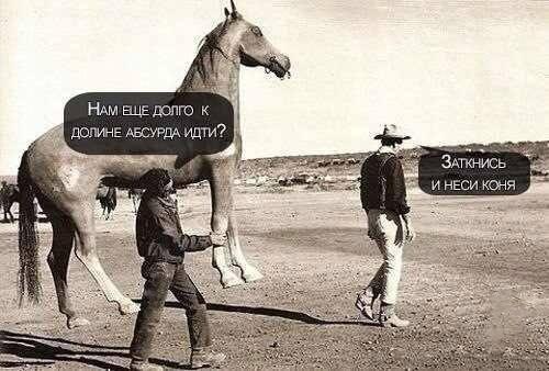 Очередная подборка смешных веселых картинок