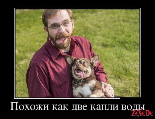 Супер Подборка фотоприколов Демотиваторов