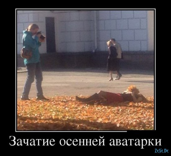 Подборка смешных фоток и картиночек демотиваторов
